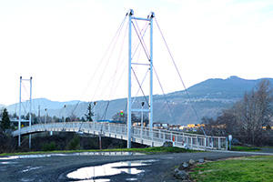 Pedestrian Bridge